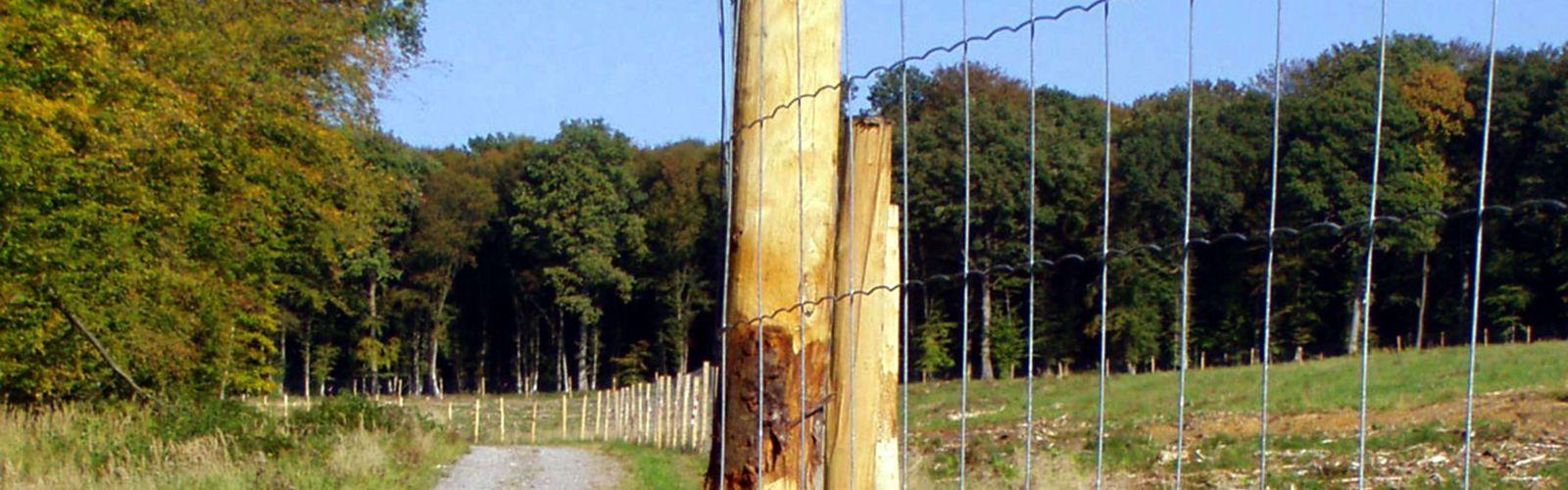 Fournitures pour forêts et paysages - E2d